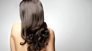 the best foods you can eat for healthy hair today com