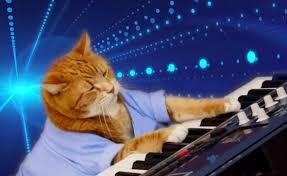 Keyboard Cat Meme - bento a feline known for appearing in keyboard cat videos has
