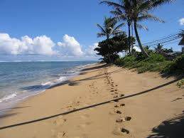 cozy beach cottage you u0027ll love punaluu oahu best places to stay