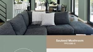amazing green best 20 green living room paint ideas on pinterest