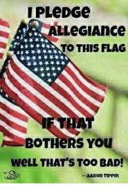 Too Bad Meme - ipledge allegiance to this flag bothers you well that s too bad