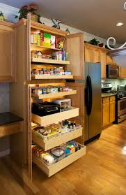 Custom Kitchen Cabinet Doors Online Ideas For Custom Kitchen Cabinets Roy Home Design