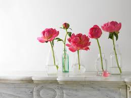 peonies in various stages of blooming love it studio