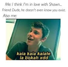 Shawn Meme - image about cute in 馃幐shawn mendes 馃崄 by 銆庘棅陼モ劤畋駨y鈩撫腐鉂 傟暐鈼娿