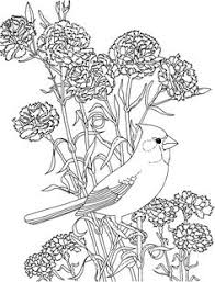 idaho bird flower free printable coloring idaho