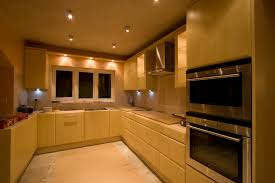 Kitchen Depot New Orleans by Furniture Oak Kitchen Cabinets Wood Kitchen Cabinets And Wood