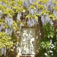 garden design with brits at their best u british life english