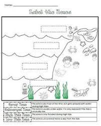 temperate oceans ecosystem worksheets ocean and science worksheets