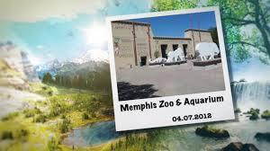 Zoo Lights Memphis Tn by Memphis Tn Zoo U0026 Aquarium Youtube