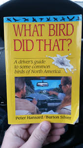 bird identification guide i you not thriftstorehauls