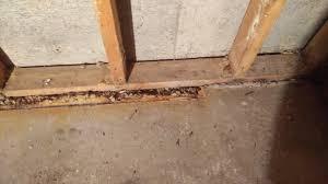 Seal Concrete Walls Basements Backyard Basement Wall Basement Wall U201a Basement Wall Construction
