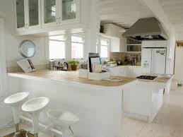 kitchen design concepts kitchen styles and designs with ideas photo 44998 fujizaki