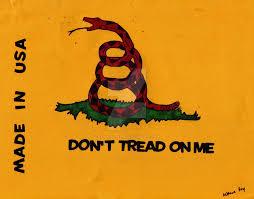 Don T Tread On Me Flag Origin Variation On The Gadsden Flag By Raiderhater1013 On Deviantart