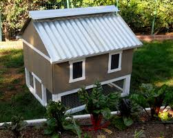 chicken coop kit for 6 chickens 10 the smart chicken coop to 6