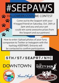 Halloween Cubicle Decorating Contest Flyer barkzilla a savvy nyc dog blog 2013