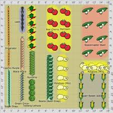 Best Vegetable Garden Layout Vegetable Garden Layout Planner Webzine Co