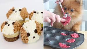 how to make a cake for your birthday dog oddly satisfying video