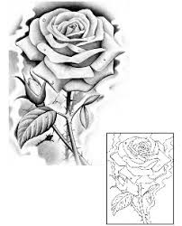 symbolism in rose tattoos and rose tattoo designs