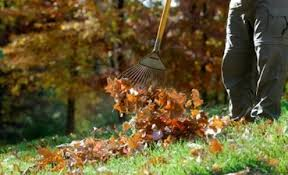 Types Of Garden Rakes - how to choose the right rake for the job bob u0027s blogs