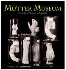 Mr Wilson S Cabinet Of Wonder Weird Museums Gogglepix