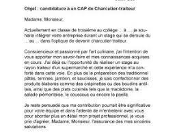 lettre de motivation pour cap cuisine lettre de motivation bp coiffure lettre de motivation employé