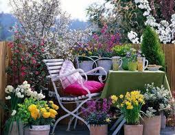 kletterpflanzen fã r balkon sichtschutz für balkon holz hohe geländer blumen blühende bäume