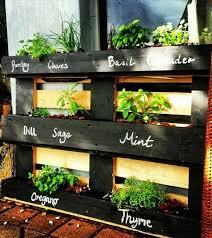 diy vertical herb garden space saving and practical ideas for a lovely pallet herb garden