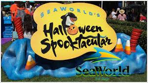 2016 seaworld halloween spooktacular party at san diego youtube