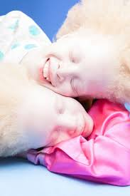 What Is Bored Panda by Best 25 Albino Twins Ideas On Pinterest Cute Blonde Boys