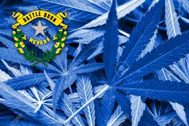 Colorado Flag Marijuana Nevada State Flag On Cannabis Background Drug Policy