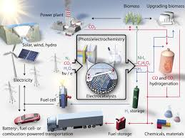 combining theory and experiment in electrocatalysis insights into