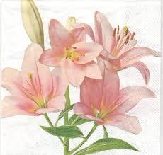 Serviette En Papier Fleur by Serviette En Papier Fleurs Lys Passioncreationcollection