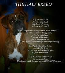 boxer dog sayings 840 best boxer love images on pinterest boxer love boxer
