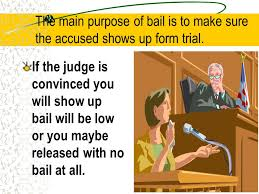 fine for running a red light 8th amendment prohibits excessive bail or fines courts must be