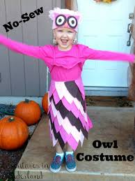 Owl Halloween Costumes For Kids by No Sew Owl Costume
