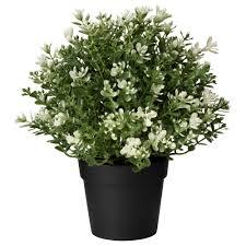 Fake Bushes Artificial Flowers U0026 Artificial Plants Ikea