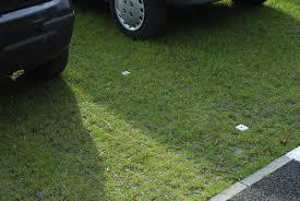 Plastic Pavers by Plastic Grass Grid For Driveway Car Parking Lot Plastic Gr Grid