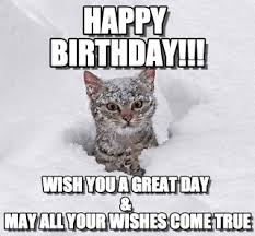 Rude Happy Birthday Meme - happy birthday meme of cat free available