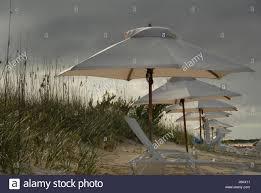 beach seaside the beach seashore umbrella tropical umbrellas stock
