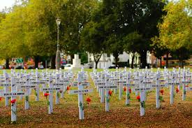 fields of remembrance anzac crosses in cranmer square