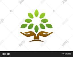 tree symbol tree hand logo hand tree nature vector photo bigstock