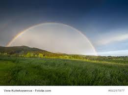 sprüche und weisheiten sprüche regenbogen sammlung der schönsten deutschen zitate