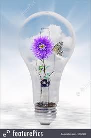 illustration of nature in light bulb
