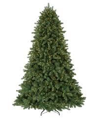 classic noble fir christmas tree tree classics