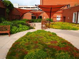 greenroofs com projects national institutes of health nih