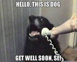 Funny Get Well Meme - 20 funny get well soon memes to cheer up your dear one word porn