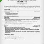 cashier resume template cashier resume template 16 free samples