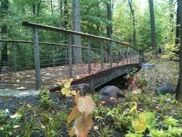 Botanical Garden In Bronx by New York Botanical Garden Bronx Ny Harvard Graduate Of