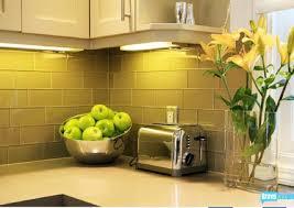 jeff lewis kitchen designs flipping out jeff lewis design contemporary kitchen los