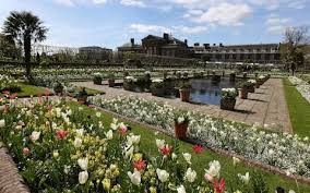 who lives in kensington palace princess diana s garden to be filled with her favourite flowers by